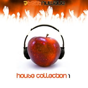 Various Artists House Collection, Vol. 1