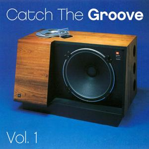 Catch the Groove - Vol. 1
