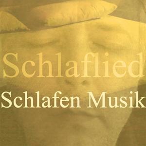 Schlafen musik (Vol. 3)
