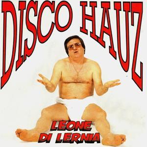 Disco hauz