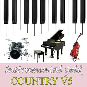Instrumental Gold: Country, Vol. 5
