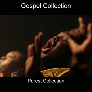 Gospel Collection (Purest Collection)