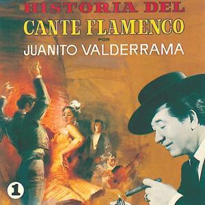 Historia del Cante Flamenco, Vol.1