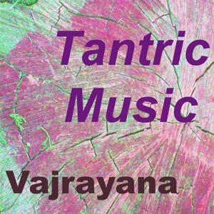 Tantric Music (Vol. 4)