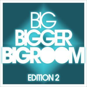 Big, Bigger, Bigroom, Vol. 2