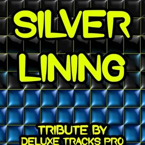Silver Lining (Crazy Bout You) - a Tribute to Jessie J