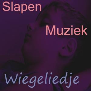 Slapen muziek (Vol. 3)
