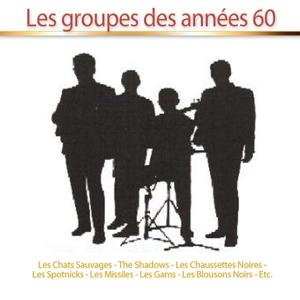 Les groupes des années 60 (30 tubes)