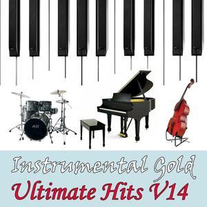Instrumental Gold: Ultimate Hits, Vol. 14