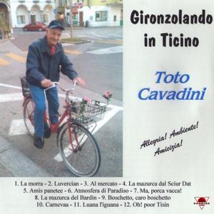 Gironzolando in Ticino
