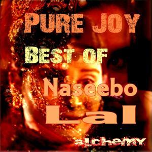 Pure Joy (Best Of)