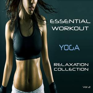 Essential Workout - Yoga - Relaxtion Collection, Vol. 2
