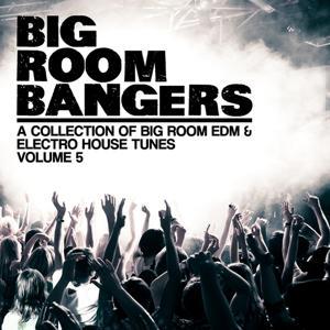 Bigroom Bangers, Vol. 5