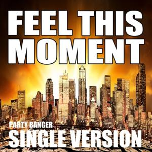 Feel This Moment (Radio Version)