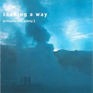 Seeking a way, la musica dell'anima, Vol. 3