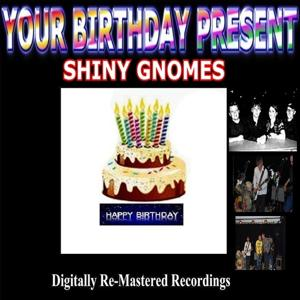 Your Birthday Present - Shiny Gnomes