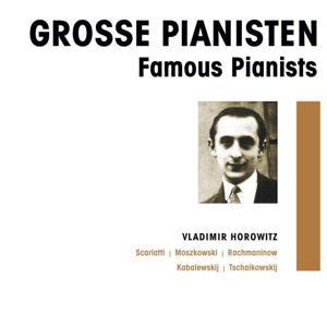 Grosse Pianisten - Vladimir Horowitz