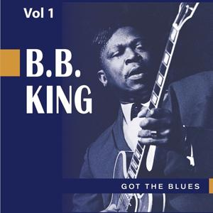 Beale Street Blues Boy, Vol. 1: Got the Blues