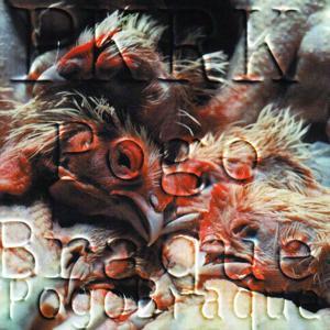 Pogo Braque