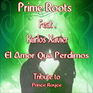 El Amor Que Perdimos Tribute to Prince Royce (Tribute to Prince Royce)