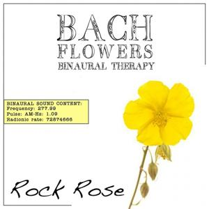 Rock Rose EFT Dose Therapy (Binaural Real Frequency from Bach Flowers)