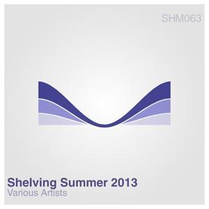 Shelving Summer 2013