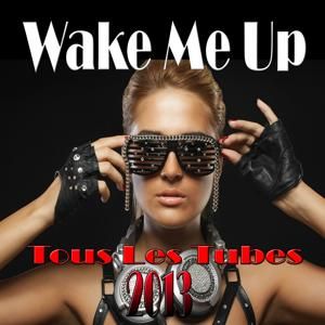 Wake Me Up (Tous les tubes 2013)