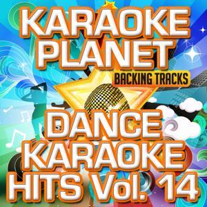 Dance Karaoke Hits, Vol. 14 (Karaoke Version)