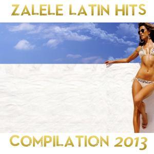 Zalele Compilation 2013