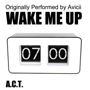 Wake Me Up (Originally Performed By Avicii)