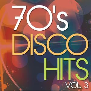 70's Disco Hits, Vol.3