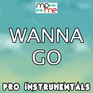 Wanna Go (Karaoke Version) [Originally Performed By Maxsta]