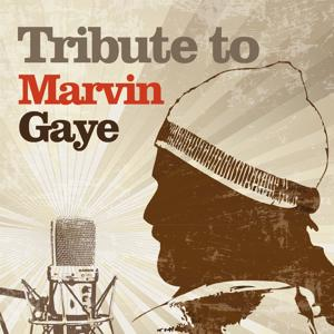 Tribute to Marvin Gaye