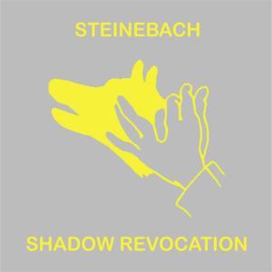 Shadow Revocation