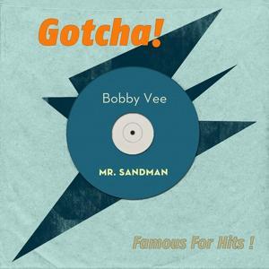 Mr. Sandman (Famous for Hits!)