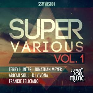 Super Various, Vol. 1