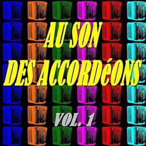 Au son des accordéons, vol. 1