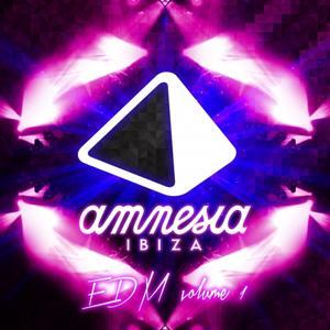 Amnesia Ibiza EDM, Vol. 1