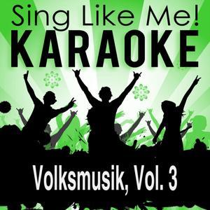 Volksmusik, Vol. 3 (Karaoke Version)