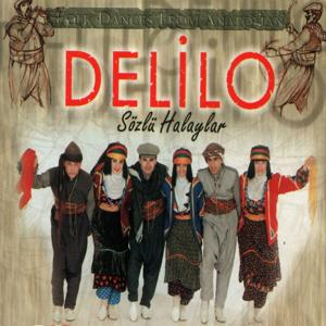 Delilo (Sözlü Halaylar)