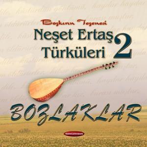 Bozlaklar - Neşet Ertaş Türküleri, Vol. 2