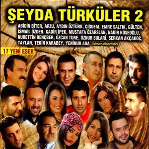 Şeyda Türküler, Vol. 2