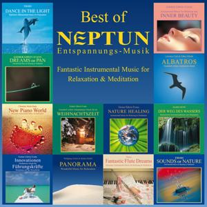 Best of Neptun (Fantastic Instrumental Music for Relaxation & Meditation)