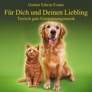 Musik Für Haustiere : Tierisch Gute Entspannung