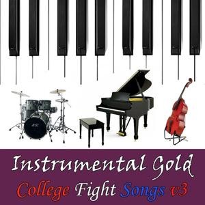 Instrumental Gold: College Fight Songs, Vol. 3