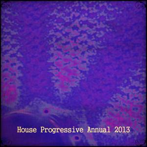 House Progressive Annual 2013