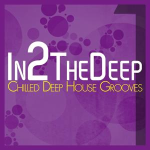 In2 the Deep - Chilled Deep House Grooves 1