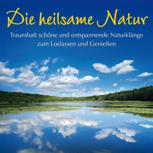 Die heilsame Natur: loslassen und genießen