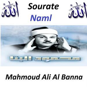 Sourate Naml (Quran - Coran - Islam)