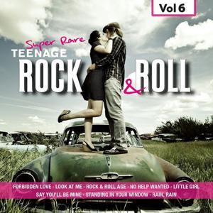 Super Rare Teenage Rock & Roll, Vol.6